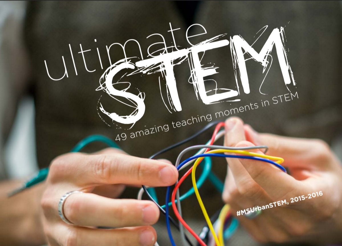 ultimate stem book